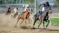 Horses into the final stretch